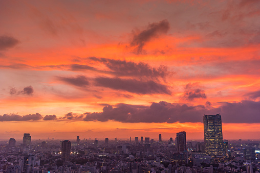 Minato Ward「Tokyo Beautiful Sunset」:スマホ壁紙(11)