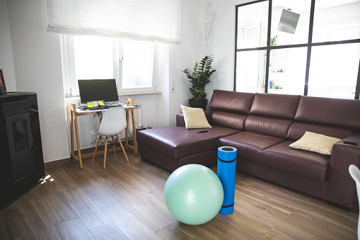 Occupational Safety And Health「Home office space, laptop computer and fitness ball」:スマホ壁紙(9)