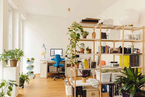 Houseplant「Home office with shelf and plants in modern building」:スマホ壁紙(13)