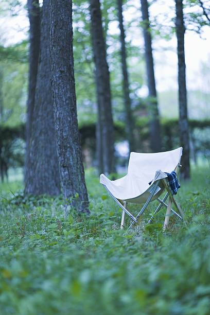 Camp Chair on a Meadow at Campsite:スマホ壁紙(壁紙.com)