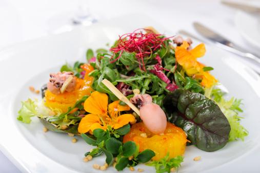 Pine Nut「Rocket Salad with Baby Squid and Saffron Shrimp」:スマホ壁紙(4)