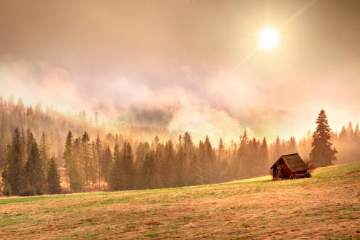 Tatra Mountains「Foggy Mountain Landscape - Tatra Mountains」:スマホ壁紙(6)