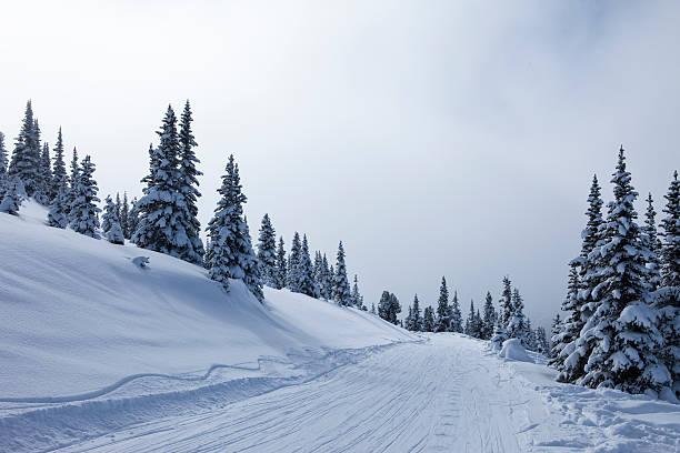 Snowy road.:スマホ壁紙(壁紙.com)