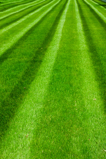 Baseball - Sport「Green Soccer Field」:スマホ壁紙(2)