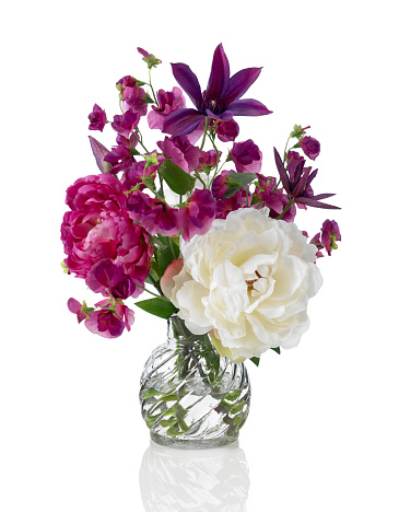 Purple「Sweet pea, peony and Clematis bouquet on white background」:スマホ壁紙(2)