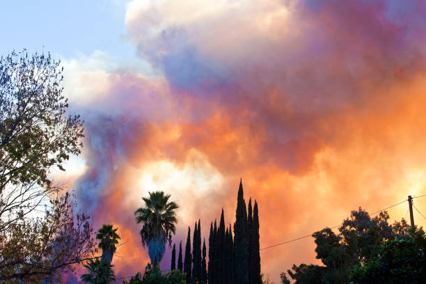With huge clouds of orange smoke and flames, power lines and trees are in the path of the Thomas forest fire in Ojai California - December 2017—part of a series:スマホ壁紙(壁紙.com)
