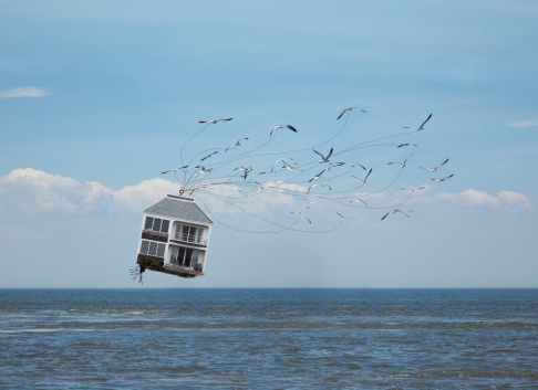 Problems「House being carried off by birds」:スマホ壁紙(0)