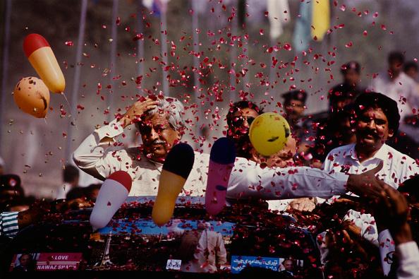 Petal「Nawaz Sharif」:写真・画像(15)[壁紙.com]