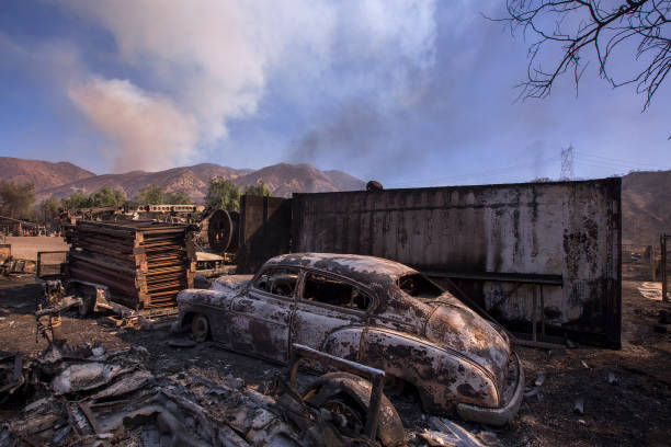 カリフォルニア州「Southern California Wildfires Forces Thousands to Evacuate」:写真・画像(5)[壁紙.com]