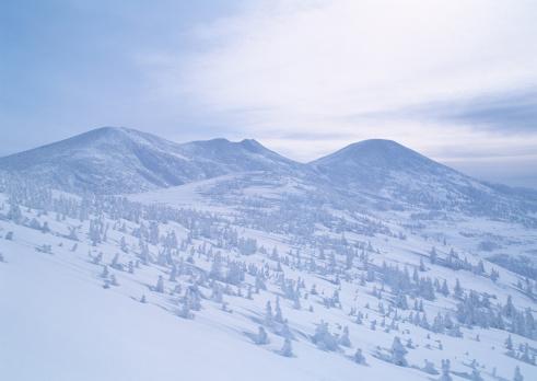 Savannah「Snowy Mountain」:スマホ壁紙(17)