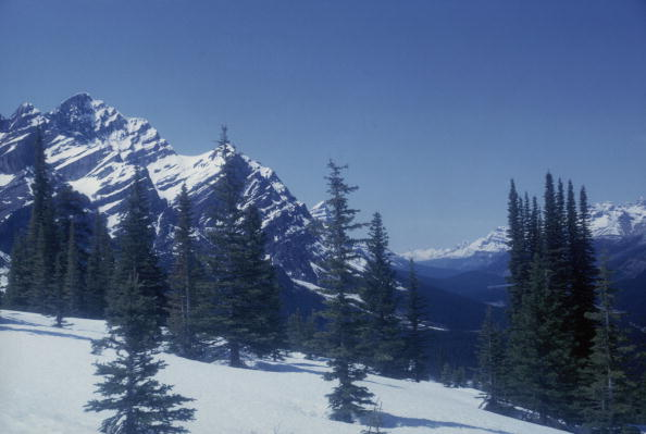 Mountain「Banff National Park」:写真・画像(6)[壁紙.com]