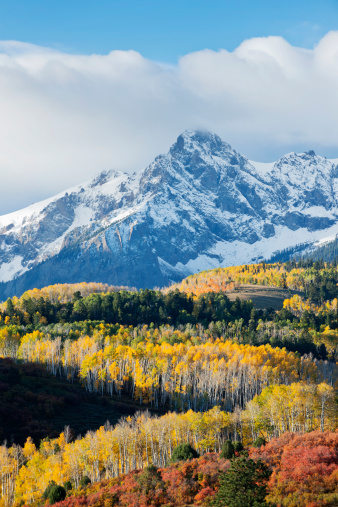 Aspen Tree「Snowy mountain and trees in rural landscape」:スマホ壁紙(14)
