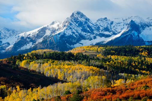 Aspen - Colorado「Snowy mountain and trees in rural landscape」:スマホ壁紙(16)