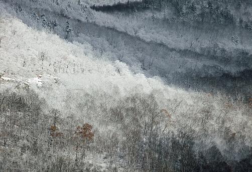 Adirondack Mountains「Snowy Mountainside」:スマホ壁紙(4)