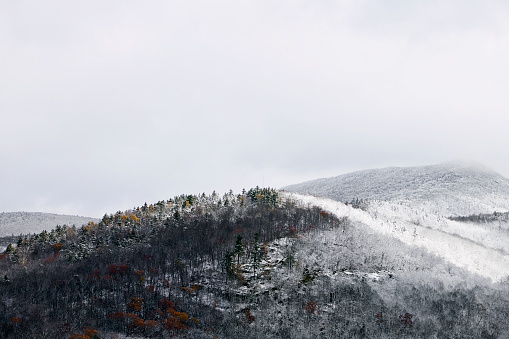 Adirondack Mountains「Snowy Mountain Top」:スマホ壁紙(16)