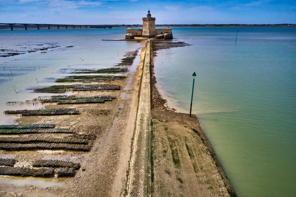 Le Fort Louvois, Oleron, France:スマホ壁紙(壁紙.com)
