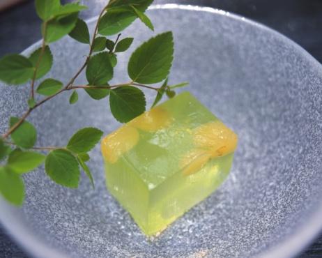 Wagashi「Yokan on plate, high angle view, Close Up」:スマホ壁紙(19)