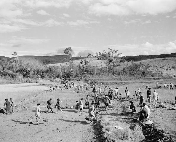 Agriculture「Wartime China」:写真・画像(8)[壁紙.com]