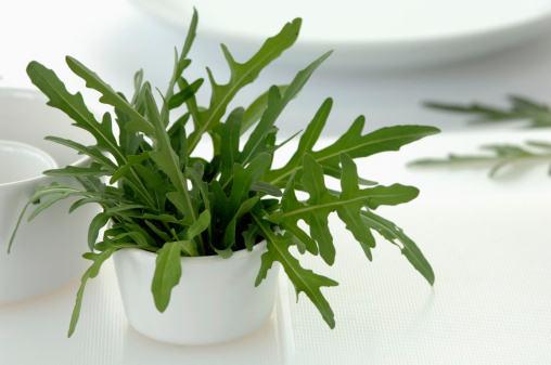 Arugula「Rocket leaves in cup」:スマホ壁紙(4)