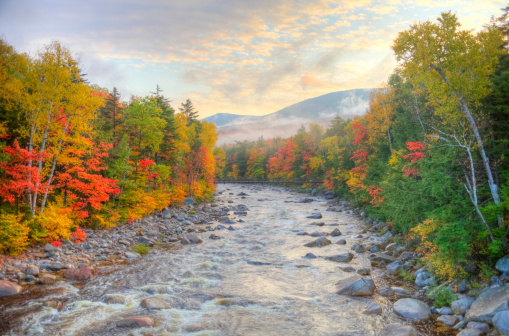 Four Seasons「Autumn in the White Mountains National Forest New Hampshire」:スマホ壁紙(18)