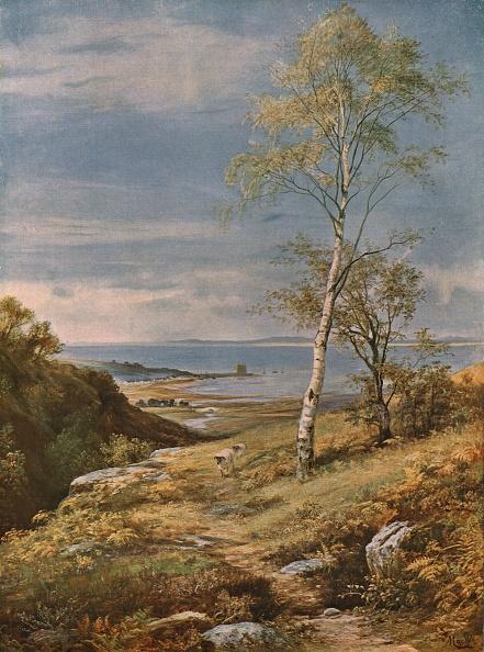 Horizon「Autumn In The Isle Of Arran」:写真・画像(10)[壁紙.com]