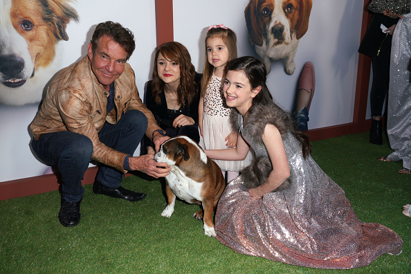 "JC Olivera「Premiere Of Universal Pictures' ""A Dog's Journey"" - Arrivals」:写真・画像(7)[壁紙.com]"