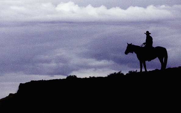 Silhouette「Great Australian Cattle Drive Nears Completion」:写真・画像(11)[壁紙.com]