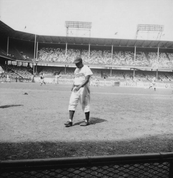 Black History in the US「Robinson With Dodgers」:写真・画像(12)[壁紙.com]