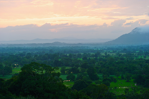 Sri Lanka「A lush landscape of trees with mountains in the distance at sunset」:スマホ壁紙(1)