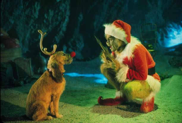 The Grinch Played By Jim Carrey Conspires With His Dog Max To Deprive The Who's Of Thei:ニュース(壁紙.com)