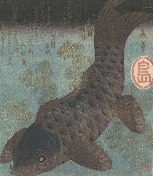 Ichiro「Carp And Pine. Creator: Gakutei.」:写真・画像(6)[壁紙.com]