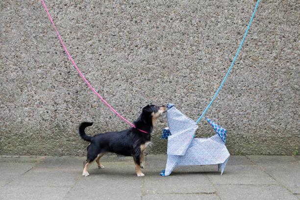 Blue origami dog and dog sniffing:スマホ壁紙(壁紙.com)