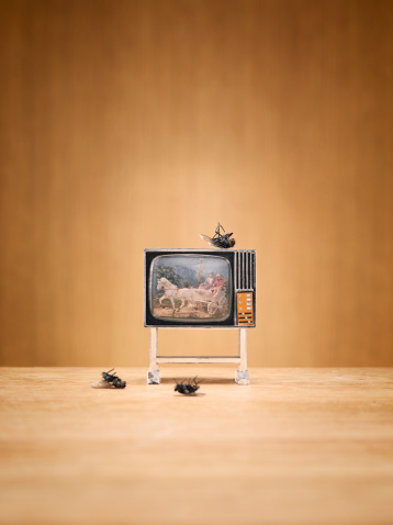 Watching TV「Miniature television and dead flies」:スマホ壁紙(8)