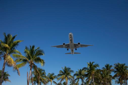 Miami Beach「Airplane landing in Miami」:スマホ壁紙(2)
