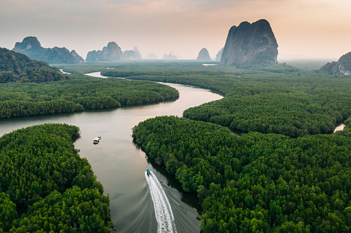 Ecosystem「Scenic view of speedboat from above near the mangrove forest in Phang Nga」:スマホ壁紙(8)