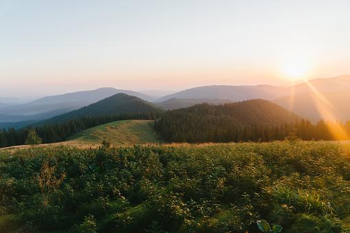 Carpathian Mountain Range「Scenic view of  meadow and mountains at dawn」:スマホ壁紙(12)