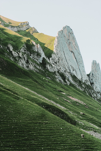 European Alps「Scenic view of mountains in Switzerland」:スマホ壁紙(14)