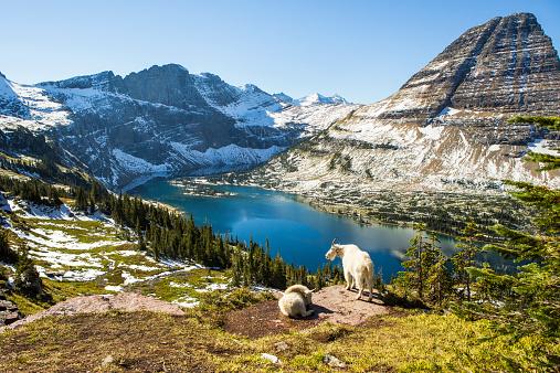 National Park「Scenic view of Glacier National Park.」:スマホ壁紙(19)