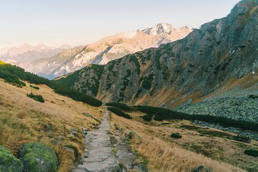 Tatra Mountains「Scenic view of path to the lake  in Tatra  mountains」:スマホ壁紙(4)