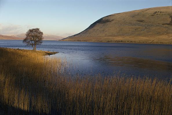 自然・風景「Scottish Loch」:写真・画像(4)[壁紙.com]