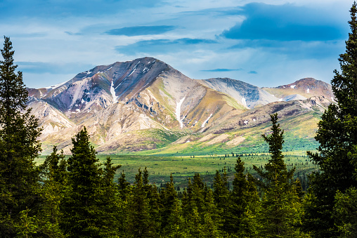冒険「A scenic view of the Alaska Range in Denali National Park near the Savage River on a summer day in South-central Alaska」:スマホ壁紙(0)