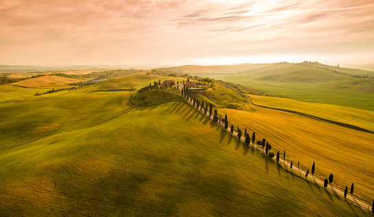 Rolling Landscape「Scenic view of stunning landscape in Tuscany」:スマホ壁紙(8)