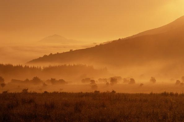 自然・風景「Misty Eildon Hills」:写真・画像(16)[壁紙.com]