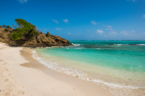 Grenadines「Scenic view of white sand beach in Tobago Cays, St. Vincent and the Grenadines, Caribbean」:スマホ壁紙(12)