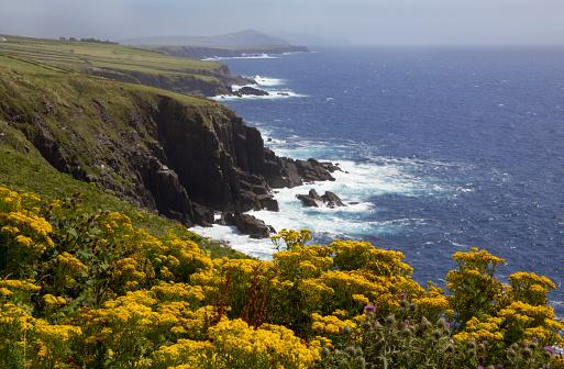 Ring of Kerry「Scenic view of the Irish west coast.」:スマホ壁紙(16)