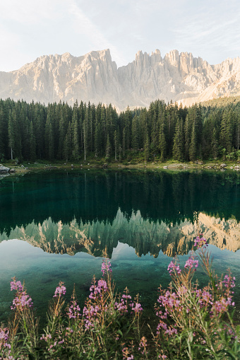 Focus On Foreground「Scenic view of Lago di Carezza in Dolomites」:スマホ壁紙(3)