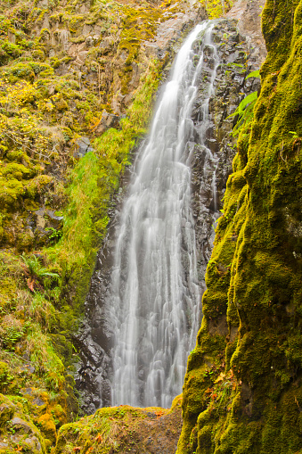 Umpqua National Forest「Scenic view of Susan Creek Falls, Umpqua National Forest, Oregon, USA」:スマホ壁紙(11)