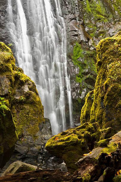Scenic view of Susan Creek Falls, Umpqua National Forest, Oregon, USA:スマホ壁紙(壁紙.com)