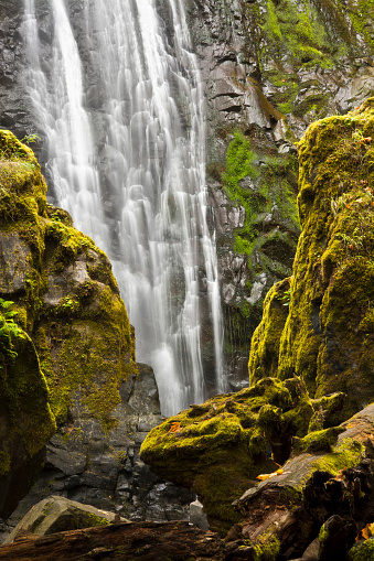 Umpqua National Forest「Scenic view of Susan Creek Falls, Umpqua National Forest, Oregon, USA」:スマホ壁紙(9)