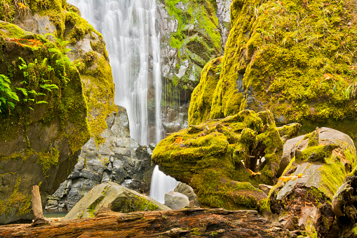 Umpqua National Forest「Scenic view of Susan Creek Falls, Umpqua National Forest, Oregon, USA」:スマホ壁紙(5)